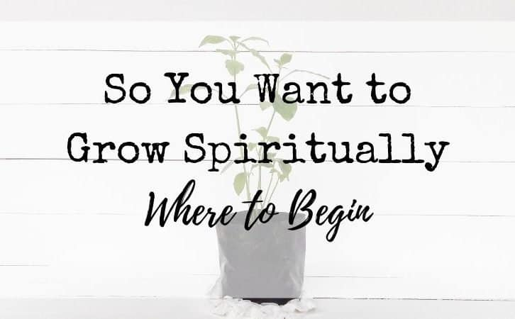 So You Want to Grow Spiritually